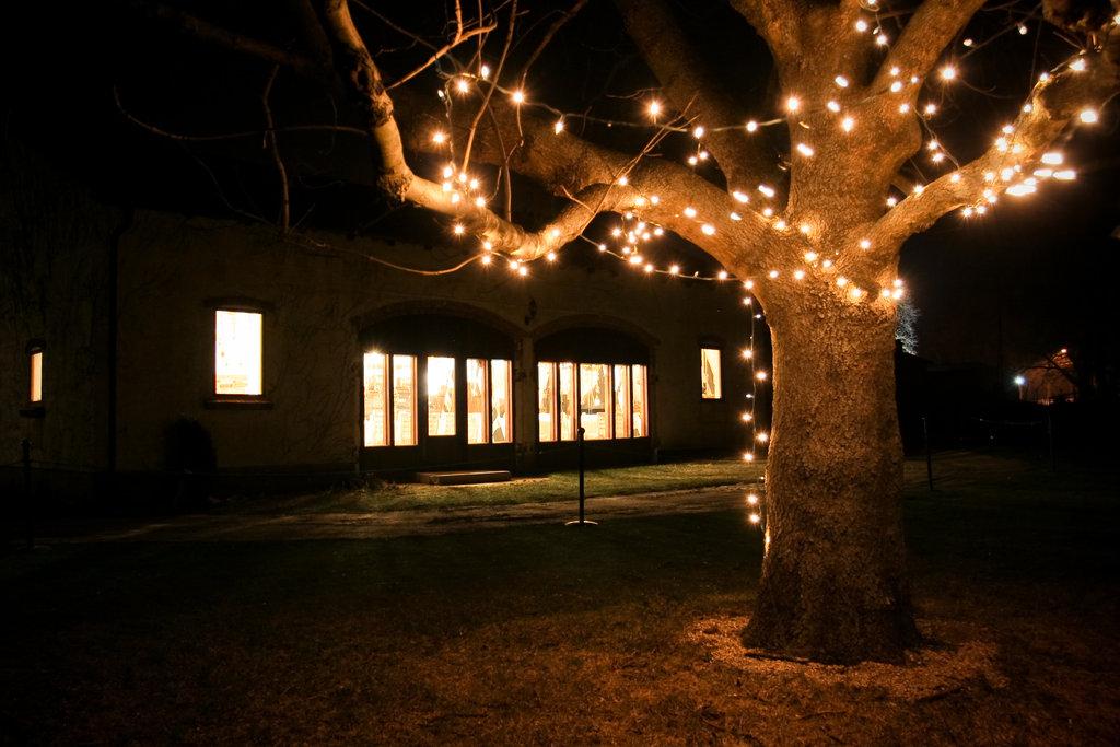 Drzewo z lampkami